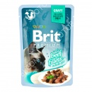 Brit Premium with Beef Fillets in...