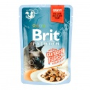 Brit Premium with Turkey Fillets ...