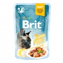 Brit Premium with Tuna Fillets in...