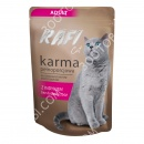 Dolina Noteci RAFI Adult Cat (пау...