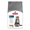 Hills Science Plan Feline Adult I...