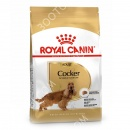 Royal Canin Cocker Adult Сухой корм для собак породы кокер спаниель