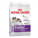 Royal Canin (Роял Канин) Giant St...