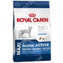 Royal Canin (Роял Канин) Maxi Junior Active + Игрушка для собак Trixie 3411 Виниловый ежик мяч (7,5 см)