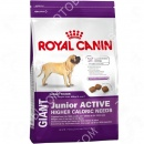 Royal Canin (Роял Канин) Giant Junior Active + Летающая тарелка Trixie 33501 (18 см)
