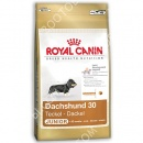 Royal Canin (Роял Канин) Dachshund Junior 30 + Мягкая игрушка для собак (Ежик) Trixie 35934