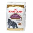 Royal Canin British Shorthair (ку...
